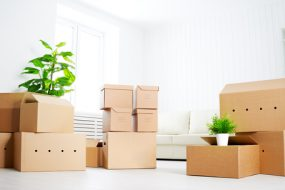 chattanooga pro movers